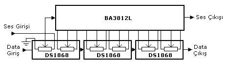 5band5.jpg